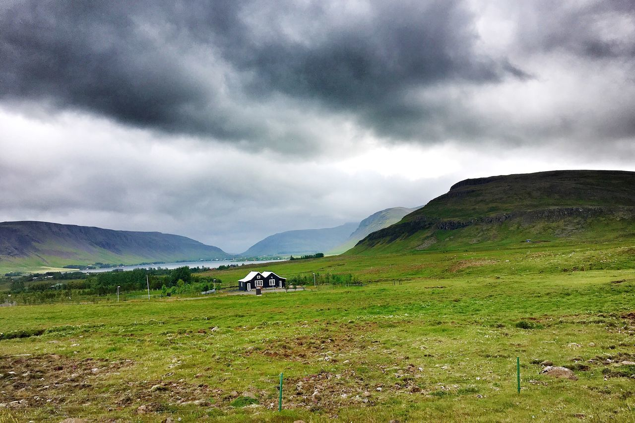 nature, mountain, beauty in nature, scenics, grass, field, landscape, cloud - sky, sky, day, tranquility, tranquil scene, outdoors, green color, rural scene, no people, animal themes, storm cloud, domestic animals, mammal, scenery