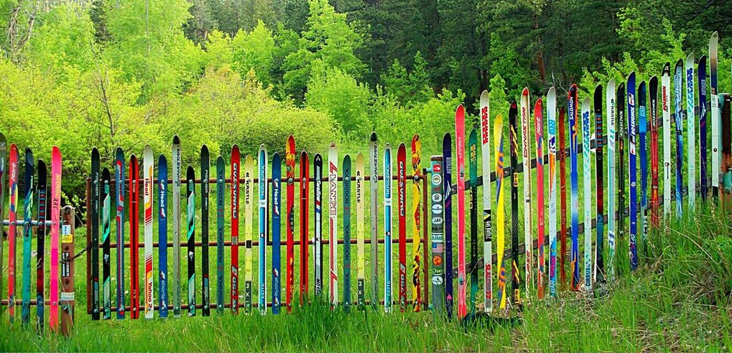 Showcase March A Fen-ski on My Land-ski! Skis Colorful Fence Clever Fence Coloradolife Colorado Life All Dressed Up.... And No Where To Go.... Fun With Color