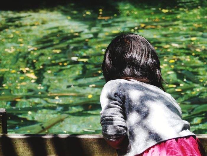 Rear view of girl looking at water lilies