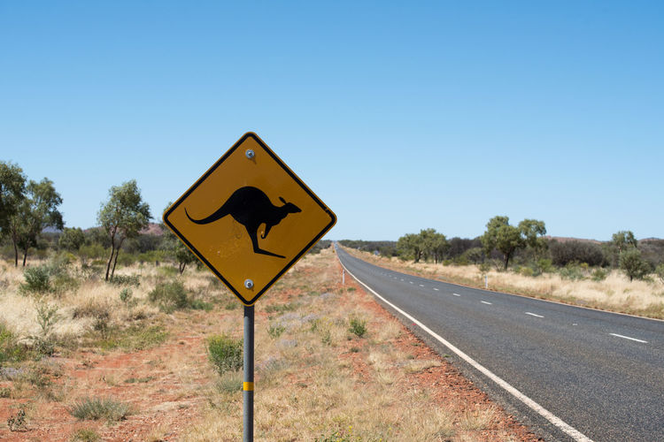 Australia Outback Blue Clear Sky Day Kangaroo Nature No People Outbackaustralia Outdoors Road Road Sign Sky Transportation Tree Yellow