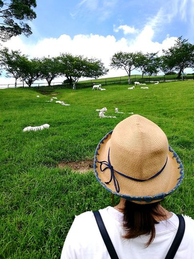 Rear View Of Mid Adult Woman Wearing Hat Looking At Goats On Grassy Field Against Cloudy Sky