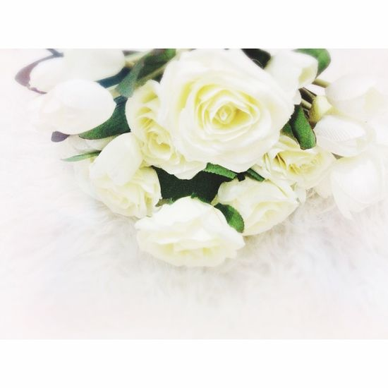 ahh love it Flowers Flower Popularphoto Hello World Beautifull Loveforlove Goodmorning