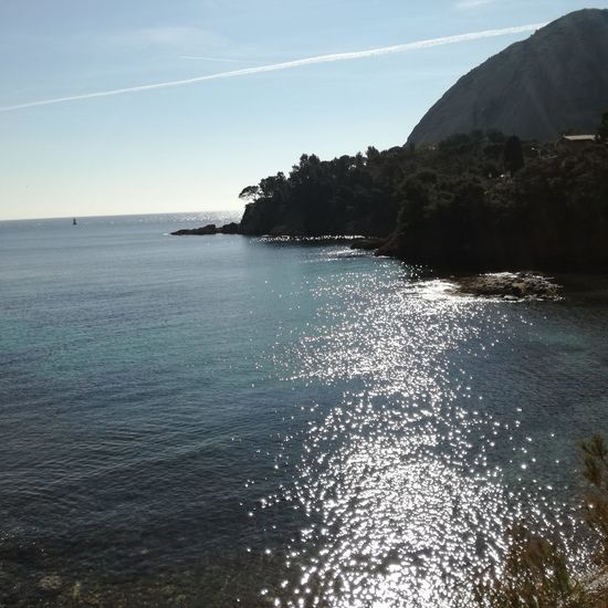 Mediterranean Coast Beauty In Nature Bec De L'aigle Clear Sky Day Horizon Horizon Over Water Land Mediteranean Mugel Nature No People Outdoors Scenics - Nature Sea Sky South France Sunlight Tranquility Tree Vapor Trail Water Waterfront EyeEmNewHere My Best Travel Photo A New Beginning