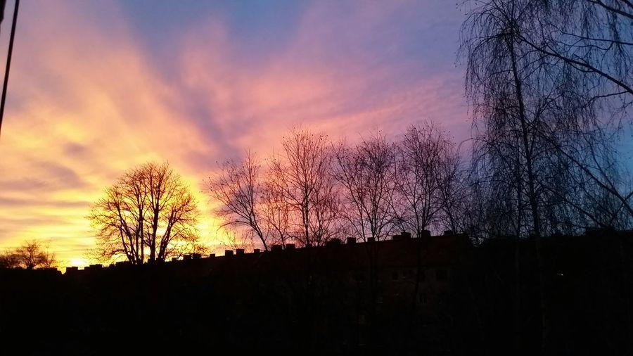 Zachód słońca^^ Sunset Wroclaw Wroclove Sky And Trees First Eyeem Photo