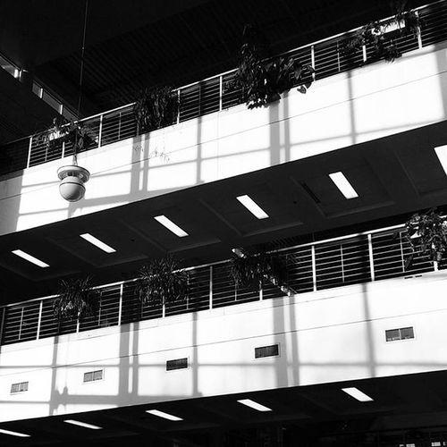 8am Environmentalscibuilding Architecture Blackandwhite