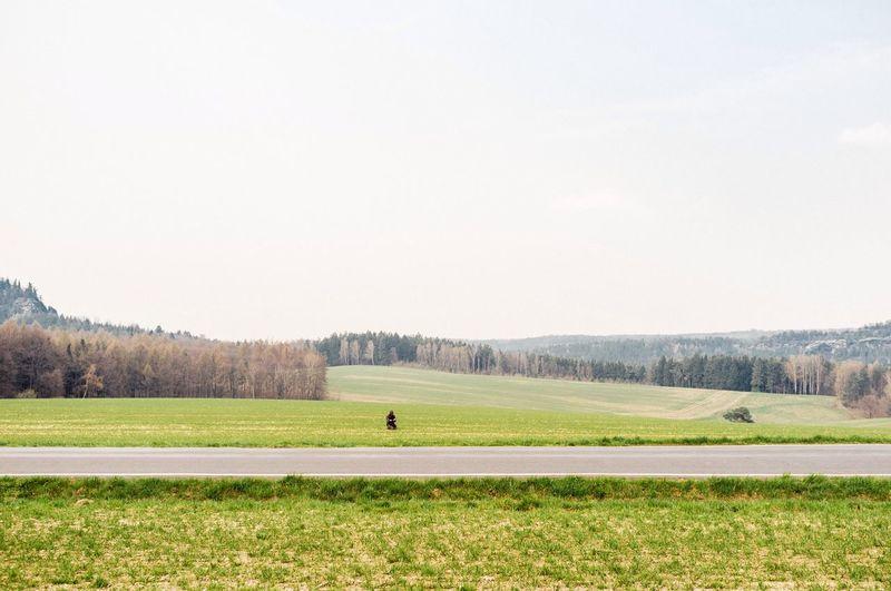 Waiting for One Landscape Nature EyeEm Nature Lover Sächsische Schweiz Kodak Portra