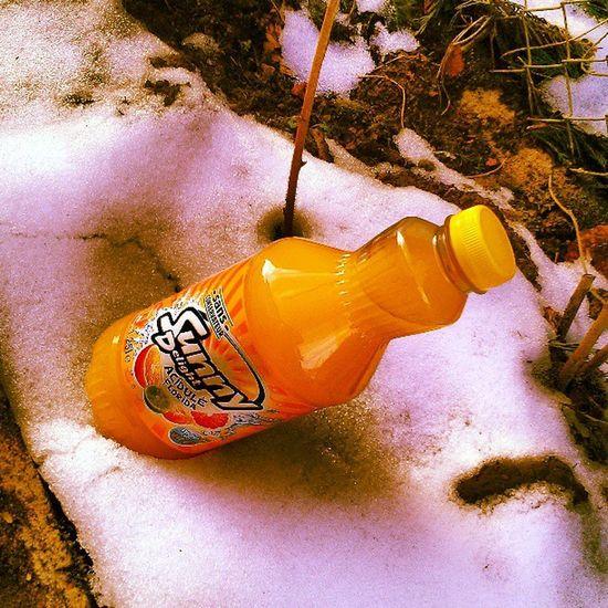 My precious.... Sunnydelight Louksdagram Statigram Orange juice instagram instagramer instalove instabest psycho winter style drink instadrink wtf