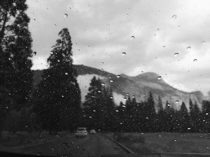 Trees against mountains seen through wet windshield during rainy season