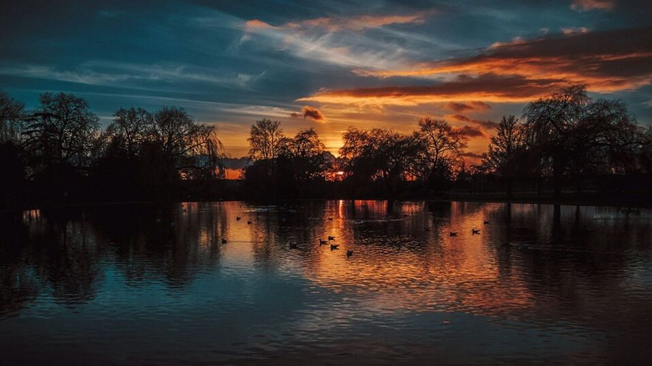 Broomfield Park The Great Outdoors – 2016 EyeEm Awards