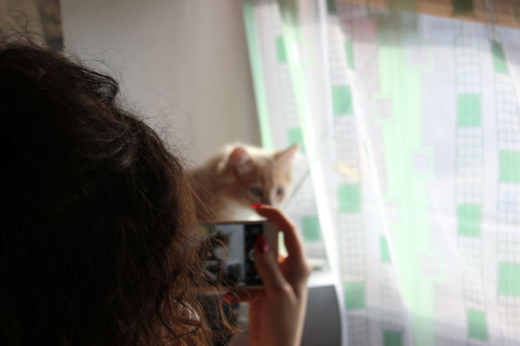 Woman photographing cat at home