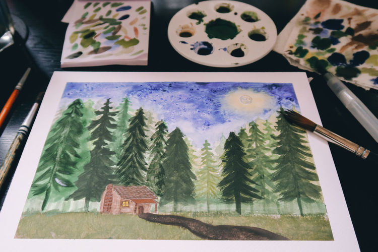 Canvas Colors Pain Brush Brushes Cabin Cabin In The Woods Close-up Day Forest High Angle View Indoors  No People Painting Table