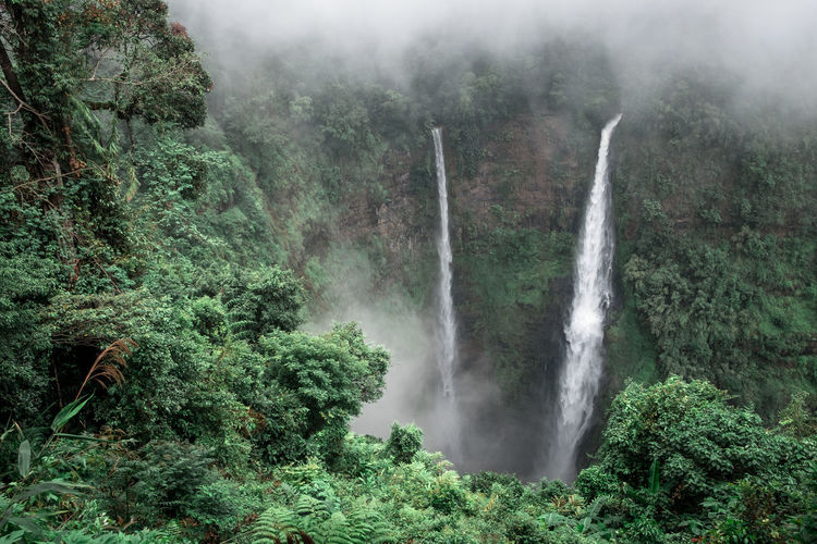 Scenic view of  tad fane waterfall in forest of laos