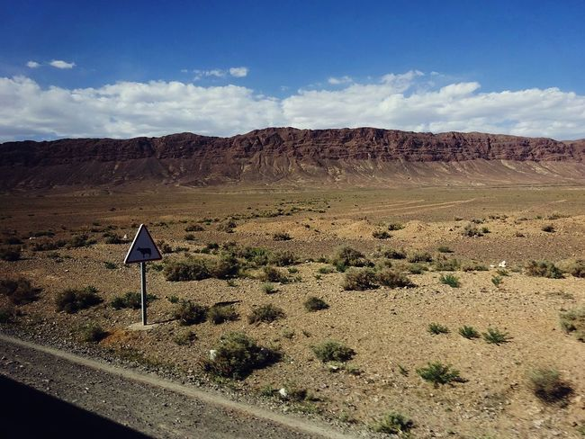 Morocco On The Way Traveling Arid Climate Arid Landscape Beauty In Nature Cloud - Sky Cow Day Dull But Beautiful Landscape Mountain Nature No People Non-urban Scene On The Road Outdoors Road Road Sign Scenics Sky Tranquil Scene Tranquility Transportation