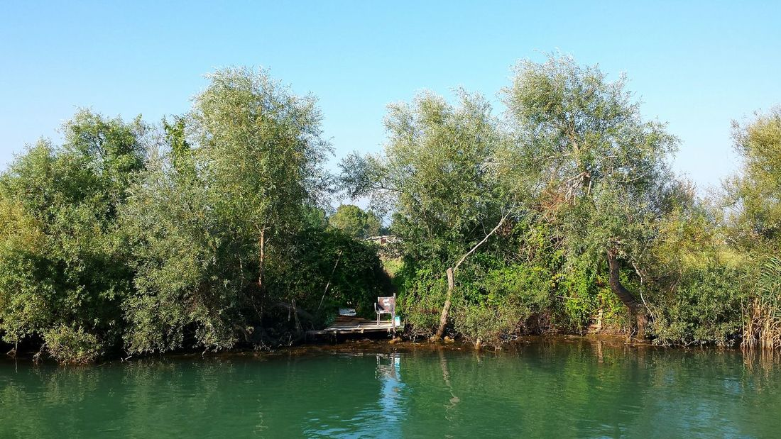 Manavgat Turkey River Cruise Riverside River Bank  Cosy Place for Fishing Time View From A Boat Enjoying The View, Empty Chair between Trees And Bushes ... on the River Side Riverscape Rivers Peaceful And Quiet Hidden Within Hidden Hidden Places