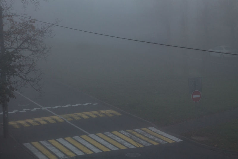 Nature No People Tree Cable Fog Day Sign Outdoors Road City Symbol