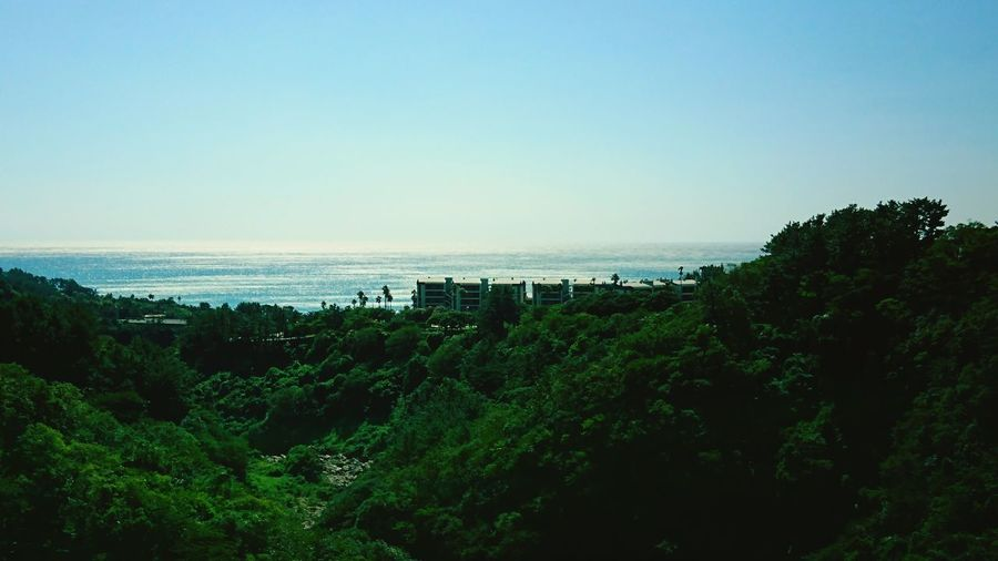 【Jeju,Korea】Jeju