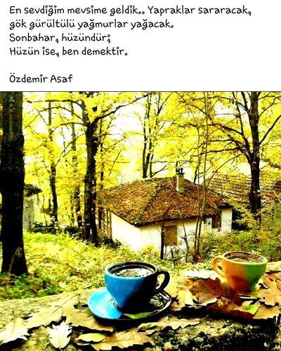 September September Days Eylul Aksami- Istanbul Eylülgeldi ve geldik en sevdiğim ay . Eylül ..ki tanrı bu ayda dogmama izin vermiş. ...Sonbahar mevsimlerin en guzeli benim için biraz hüzün biraz serin okullar ve çocuklara arkadaşlarıma kavuşma vakti 👫👭👬 Yasasin