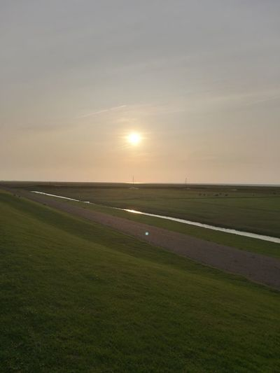 Rural Scene Sunset Agriculture Sun Sunlight Field Horizon Over Land Dramatic Sky Sky Grass