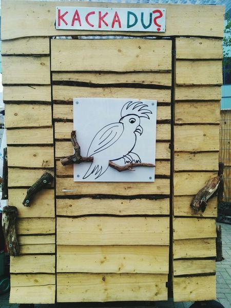 Kakadu Vogel Bird Holz Wood Hütte Bretter Dixi Klo Toilet Toilette