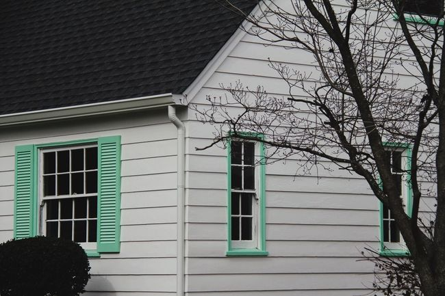 Mint Green Suburbia Building Exterior Architecture Built Structure House Outdoors Window Bare Tree Residential Building The Graphic City