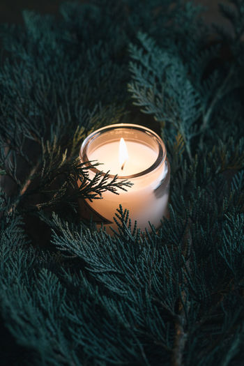 Close-up of illuminated candle in jar amidst christmas tree