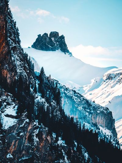Swiss alps Swiss Alps Switzerland Swiss Lumix GH5 Cold Temperature Winter Mountain Beauty In Nature Snow Scenics - Nature Snowcapped Mountain Sky Tranquility Tranquil Scene Nature Cloud - Sky Mountain Range Non-urban Scene Majestic Plant Tree Outdoors Day Environment