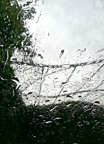 Rain Glass Sky Car Clouds Drops Drops Of Water Drops Of Rain Green Greentree Fog Foggy Foggy Day Rainy Day Photo ☔