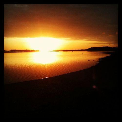 Sunset Walking Beech Woods Lovesaturdays HalfTerm