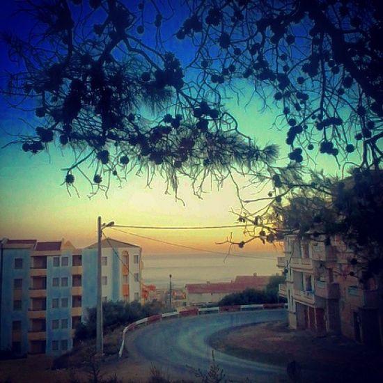 So Calm Sea Road Natur Humen Destraction Creativ Algeria Tipaza chiffalo not so bad !!!