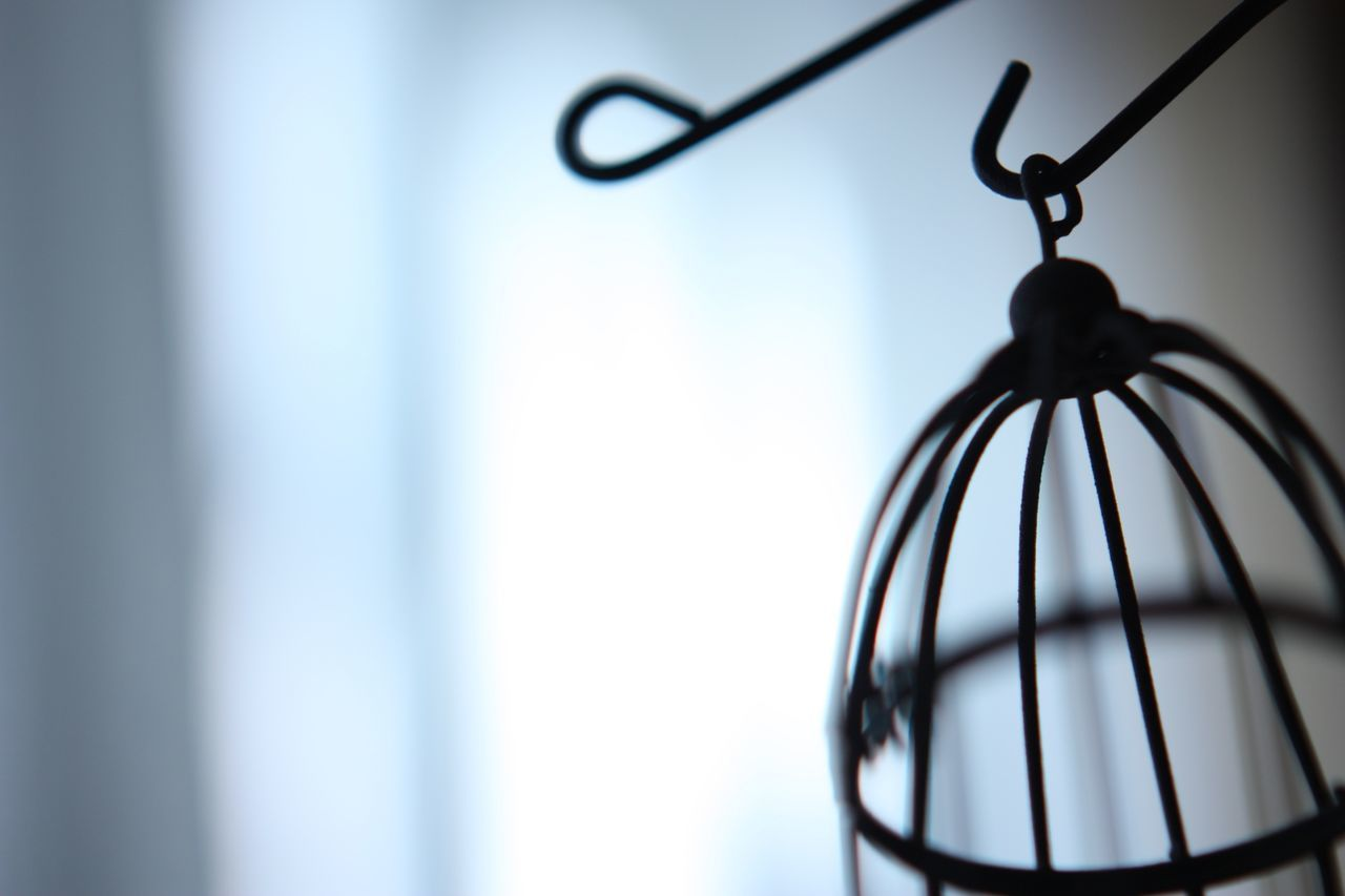 Cropped Image Of Birdcage At Home
