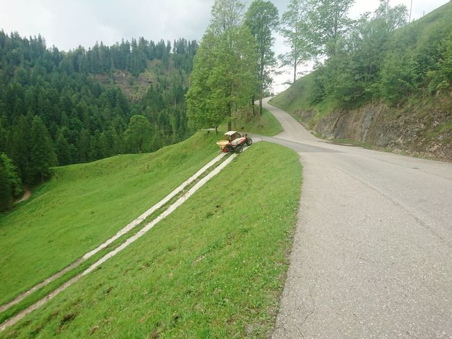 Road Transportation Tree Day Agriculture Grass Farmer Man At Work Outdoors Nature Landscape Emmental🇨🇭 Emmental Work HJB Mobil Sony Xperia Z5 Compact