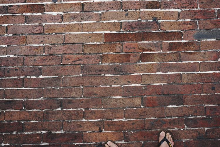 Backgrounds Full Frame Pattern Textured  Brick Wall Red Rough Marbled Effect Grunge Construction Material Shielding Force Abstract Backgrounds Ink Plant Bark Uneven Mottled Arid Rugged Block Shape Brush Stroke Grooved Nib Shield Knotted Wood Acrylic Painting