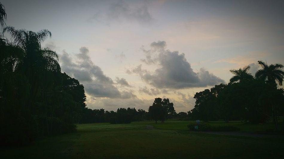 Golfing Being Tiger Woods Letsbreaka100 Golf ⛳
