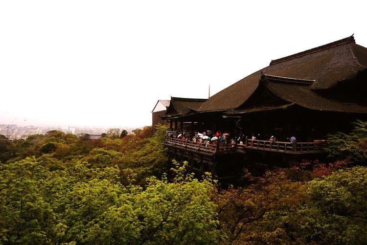 Taking Photos Relaxing Hello World Enjoying The View Sightseeing Beautiful Kyoto Japan Beautiful Day Hello World