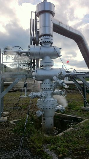 The christmas tree valve of PPL-01 Valves Industrial Geothermal