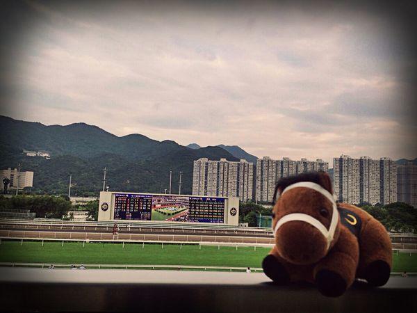 Belong Anywhere Jockey Club Hong Kong