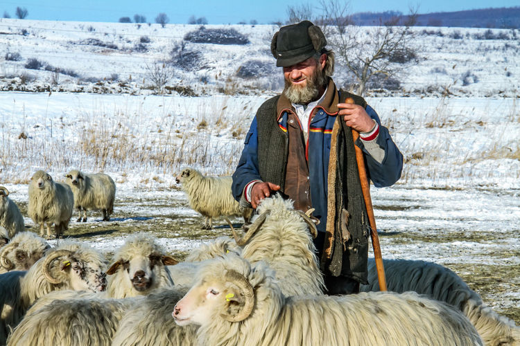 Shepherd Of The Sheep Adult Adults Only Day Domestic Animals Leisure Activity Livestock Looking At Camera Mammal Mature Adult Men Nature One Animal One Man Only One Person Only Men Outdoors People Portrait Real People Sitting Standing Warm Clothing Winter