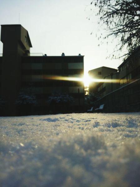 Sunrise_Collection Sillouette Blue Sky Sunshine