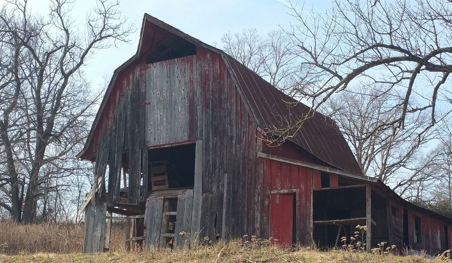 Abandoned Built Structure Building Exterior Architecture Tree Weathered Sky Day Outdoors Nature Bella Vista Arkansas