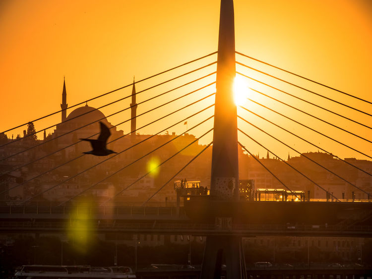 Istanbul Panasonic  Shadows & Lights Architecture Bird Building Exterior Built Structure City Day Flying Gh5 Illuminated Lens Flare Lumix Mosque Nature Orange Color Outdoors Seagull Shadow Silhouette Sky Sun Sunlight Sunset