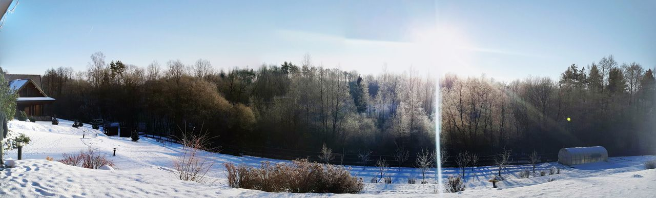 panorama of the beauty in nature Tree Cold Temperature Snow Winter Nature Tranquility Sunlight No People Beauty In Nature Day Outdoors Sky Landscape Panoramic Panorama