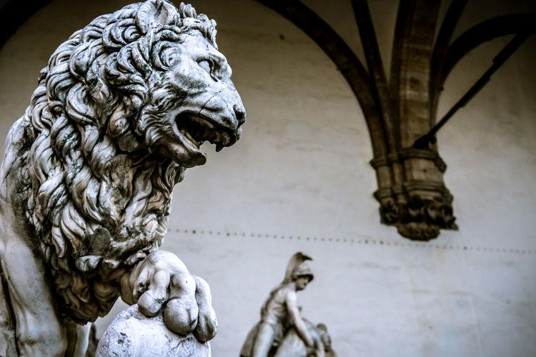 Lion at loggia dei lanzi, piazza della signoria, florence. statue 1600 by flaminio vacca.