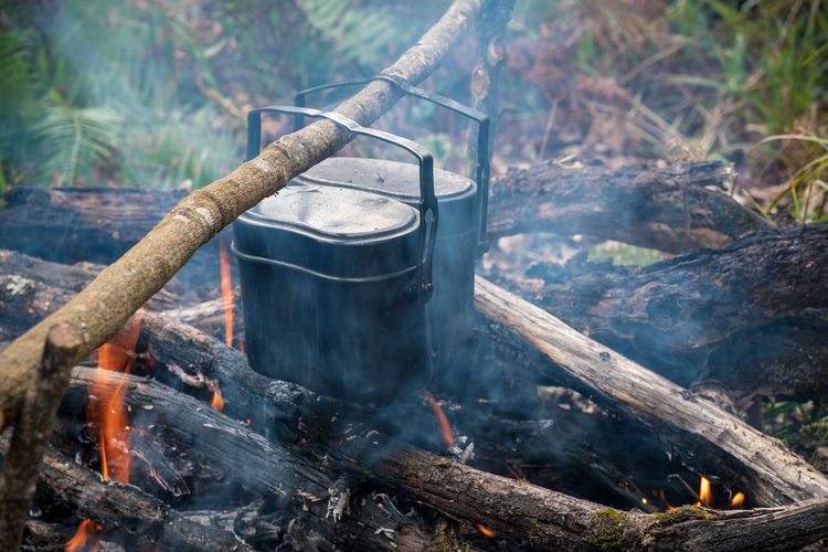 Cook rice during travel through a forest Rice Preparing Food Campfire Bonfire Outdoors Plant Household Equipment Land Preparation  Log Firewood Kitchen Utensil No People Day Wood - Material Wood Smoke - Physical Structure Flame Tree Fire - Natural Phenomenon Nature Fire Burning Heat - Temperature Camping