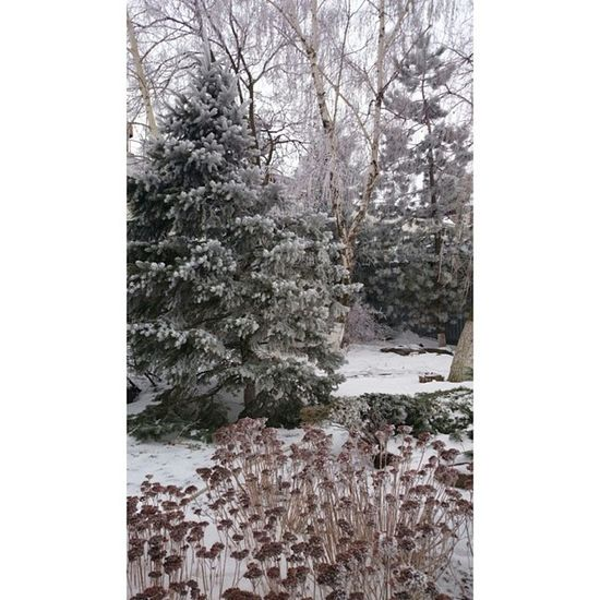 Не ну правда круто,вот почему сразу так не было XPERIA VSCO Rostov Rnd winter snow Ростов