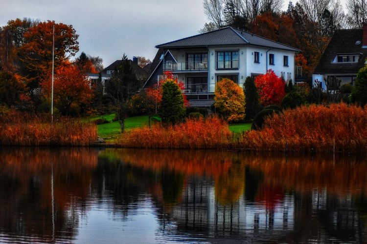 House by the Sea November2018 House House By The Sea Autumn colors Leaves EyeEm Selects Herbst Refections Waves Autumn Plant Schlei Tree Water Autumn Change Leaf Reflection House Sky Architecture Building Exterior Calm Lakeside Waterfront Growing Mid Distance Lake Countryside Autumn Mood EyeEmNewHere 50 Ways Of Seeing: Gratitude Holiday Moments