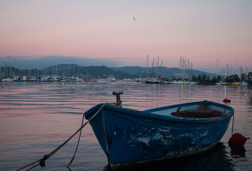 Acqua Barça Boat Cielo Rosa Journey La Spezia Liguria Mare Port Porto Rosesky Sea Sky Sunset Tramonto Voyage Water