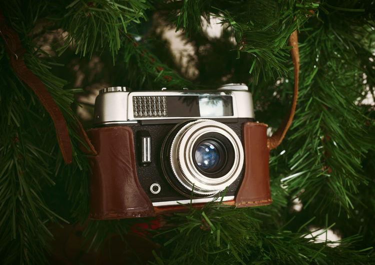 Vintage camera hanging on christmas tree