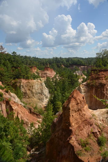 Providence Canyon State Park, Georgia, United States Beauty In Nature Canyon Cloud - Sky Environment Eroded Journey Land Landscape Nature No People Non-urban Scene Outdoors Plant Rock Rock Formation Scenics - Nature Sky Tranquil Scene Tranquility Travel Tree