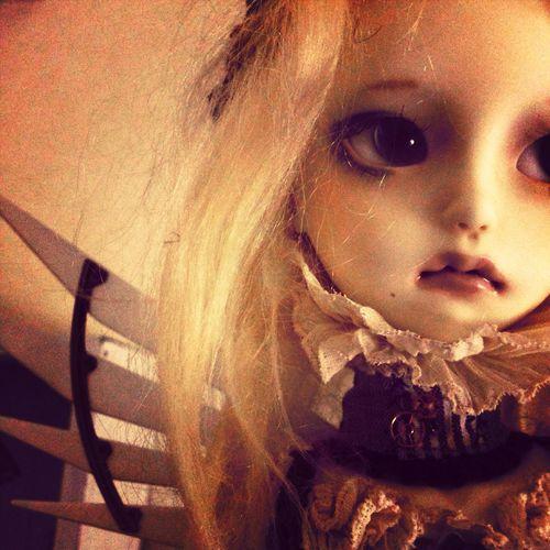 鳥の記憶を持つ少女 Bjd Doll Imdadoll Hand Made