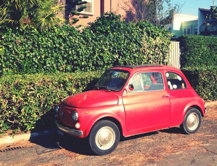 Italian Style Walking Around Rome Taking Photos Fiat 500